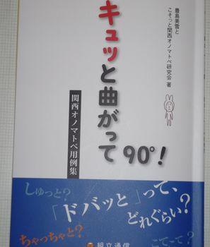 P1000971.jpg