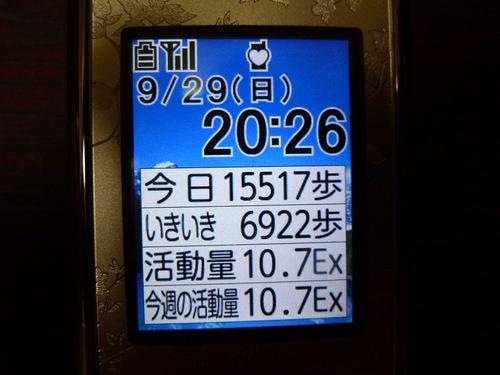 P1140509.jpg